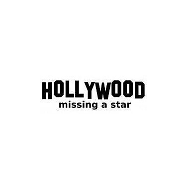 Design With Vinyl Hollywood Missing A Star Wall Decal