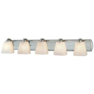 Dolan Designs Hammond 5-Light Vanity Light; Satin Nickel