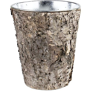CYSExcel Natural Birch Wood Wrap Zinc Cylinder Vase (Set of 6)