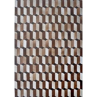 Modern Rugs Brown Area Rug; Rectangle 6' x 9'