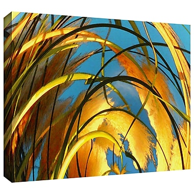 ArtWall Polar Pampas' by Dean Uhlinger Photographic Print on Wrapped Canvas; 18'' H x 24'' W