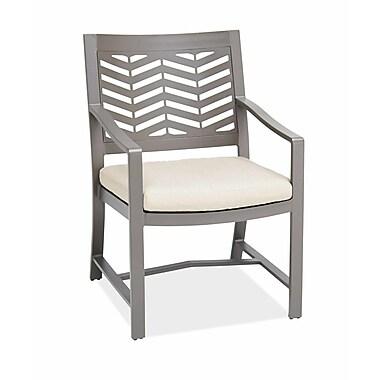 AMS Outdoor Chevron Dining Arm Chair with Cushion; Cast Mist