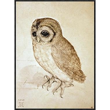 Global Gallery 'Screech Owl' by Albrecht Durer Framed Wall Art; 30'' H x 21.89'' W x 1.5'' D
