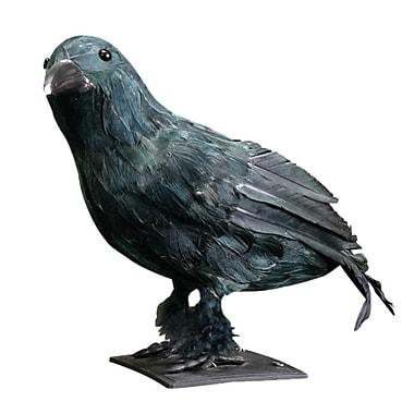 Worth Imports Crow