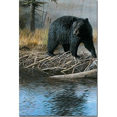 WGI GALLERY 'No Trespassing Bear' Painting Print on Wood