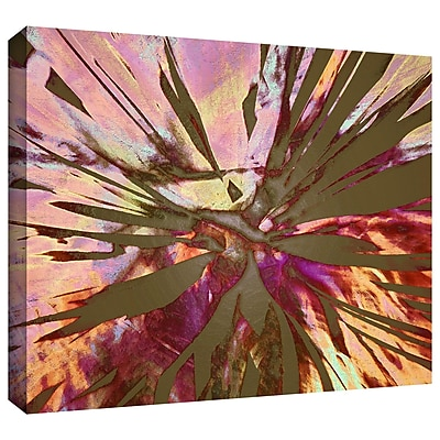 ArtWall 'Abini Succulent' by Dean Uhlinger Painting Print on Wrapped Canvas; 12'' H x 18'' W
