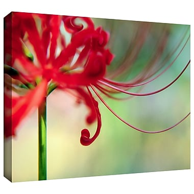 ArtWall 'Soft Spring' by Dean Uhlinger Photographic Print on Wrapped Canvas; 24'' H x 32'' W