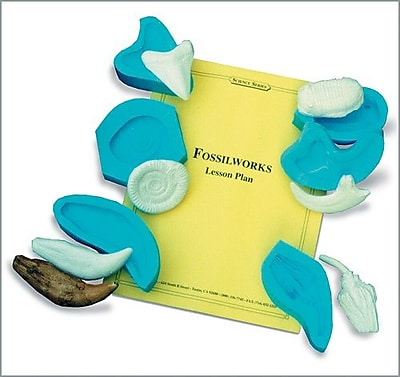 Fossilworks Lesson Plan (0400-3)