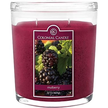 Colonial Candle 8 oz. Jar, Mulberry, 2/Pack (CC008445 )