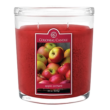Colonial Candle – Pot ovale de 22 oz CC0221135, pommes du verger, paq./1