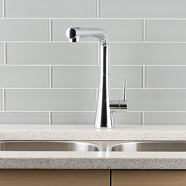 Hahn Deck Mounted Single Handle Pull Out Kitchen Faucet; Chrome