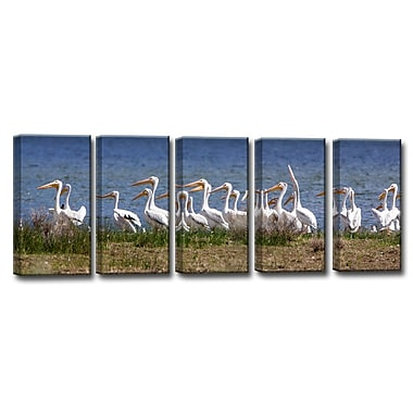 Ready2hangart 'Pelicans' by Bartlett Hayes 5 Piece Photographic Print on Canvas