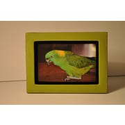 Budd Leather Lizard Leather Picture Frame; Lime green