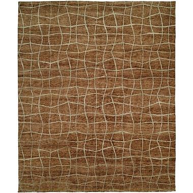 Wildon Home San Antonio Hand-Knotted Brown Area Rug; 10' x 14'
