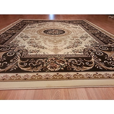 Rug Tycoon Ivory/Brown Area Rug; 10' x 13'