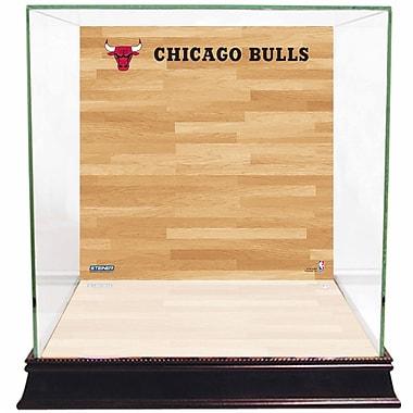 Steiner Sports Basketball Court Background Case; Chicago Bulls