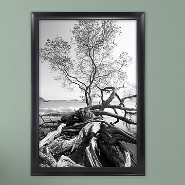 MCSIndustries Premium Wide Scoop Picture Frame; 20'' x 30''