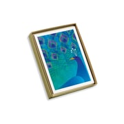 "Viabella, 10 Pc, Love Mother Earth Boxed Note Cards Peacock, Multicolor, 4"" x 5.25"", EA (17987)"