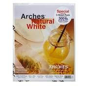 Arches Watercolor Paper 300 Lb. Cold Press Natural White 22 In. X 30 In. Pack Of 3 (100511538)