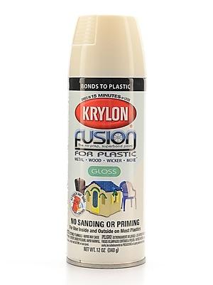 Krylon Fusion Spray Paint For Plastic Dover White Gloss (2322)
