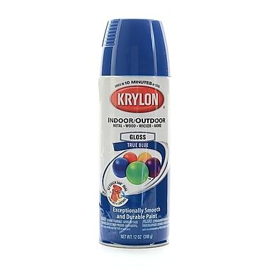 Krylon Indoor/Outdoor Spray Paint Gloss True Blue (51910)