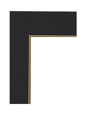 Logan Graphic Products Palettes Pre-Cut Mats Double Rectangle Smooth Black/Olde Gold 16 In. X 20 In. (M606-50)