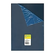 Midwest Clear Polyester Sheets 0.118 In./3.00 Mm 7.6 In. X 11 In. [Pack Of 2] (2PK-703-06)