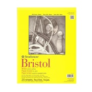 Strathmore 300 Series Bristol Vellum 11 In. X 14 In. [Pack Of 2] (2PK-342-111-1)