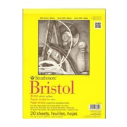 Strathmore 300 Series Bristol Vellum 9 In. X 12 In. [Pack Of 2] (2PK-342-109-1)