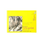 Strathmore 300 Series Newsprint Paper Pads Rough 60 Sheets 18 In. X 24 In. (307-318-1)