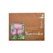 Strathmore 400 Series Watercolor Pad 13 In. X 17 In. Block Of 15 (472-13-1)