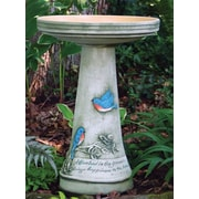 Birds Choice Burley Clay Handpainted Bluebird Birdbath