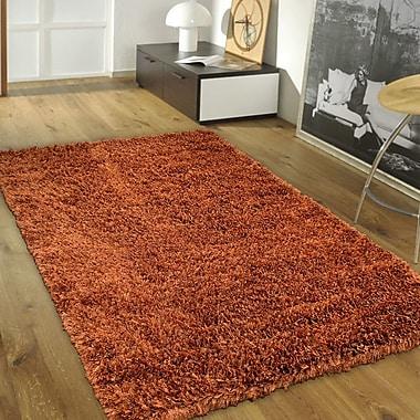 AllStar Rugs Handmade Brown Area Rug; 7' x 10'2''