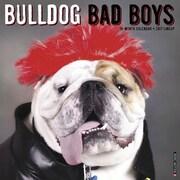 "Willow Creek Press 2017 Bulldog Bad Boys Wall Calendar 12""H x 12""W (40400)"