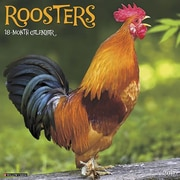 "Willow Creek Press 2017 Roosters Wall Calendar 12""H x 12""W (41803)"