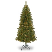 7 ft. Canadian Grande Fir with 300 Clear Lights