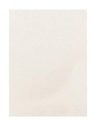 Discovery Economy Stretched Canvas 20 In. X 24 In. Each [Pack Of 2] (2PK-TX162024 BULK)