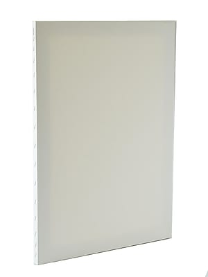 Discovery Economy Stretched Canvas 24 In. X 30 In. Each (TX162430 BULK)