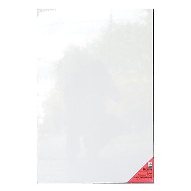 Discovery Finest Stretched Cotton Canvas White 30 In. X 40 In. Each (TX163040)