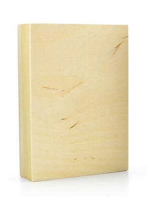 American Easel 1 5/8 In. Cradled Wood Painting Panels 5 In. X 7 In. [Pack Of 3] (3PK-AE0507-D)