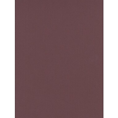Canson Mi-Teintes Mat Board Burgundy 16 In. X 20 In. [Pack Of 5] (5PK-100510131)