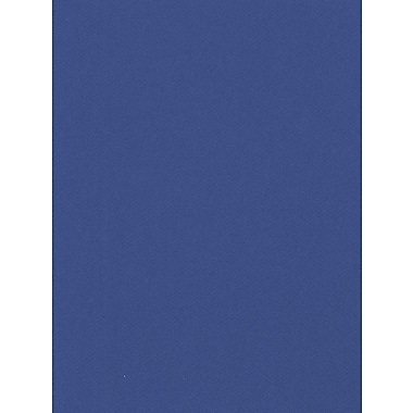 Canson Mi-Teintes Mat Board Royal Blue 16 In. X 20 In. [Pack Of 5] (5PK-100510132)