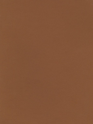 Canson Mi-Teintes Tinted Paper, Bisque, 8.5 In. x 11 In., Pack Of 25 (25PK-100511316)