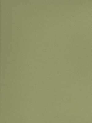Canson Mi-Teintes Tinted Paper Light Green 19 In. X 25 In. [Pack Of 10] (10PK-100511251)
