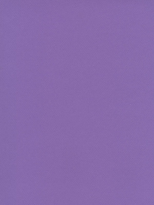 Canson Mi-Teintes Tinted Paper Parma 19 In. X 25 In. [Pack Of 10] (10PK-100511274)