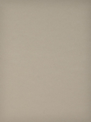 Canson Mi-Teintes Tinted Paper, Sand, 8.5 In. x 11 In., Pack Of 25 (25PK-100511292)