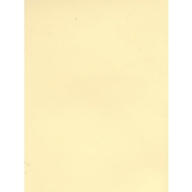Daler-Rowney Canford Cut Paper And Card Sheets Card Barley 8 1/2 In. X 11 In. [Pack Of 20] (20PK-402860202)