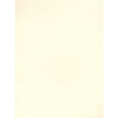 Daler-Rowney Canford Cut Paper And Card Sheets Card China White 8 1/2 In. X 11 In. [Pack Of 20] (20PK-402860011)