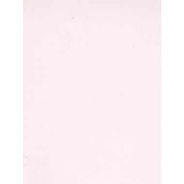 Daler-Rowney Canford Cut Paper And Card Sheets Card Ice White 8 1/2 In. X 11 In. [Pack Of 20] (20PK-402860083)