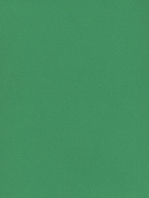 Daler-Rowney Canford Cut Paper And Card Sheets Paper Emerald Green 8 1/2 In. X 11 In. [Pack Of 20] (20PK-402260026)